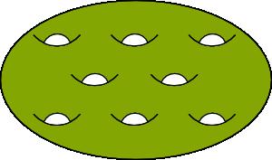 8-Holed Torus