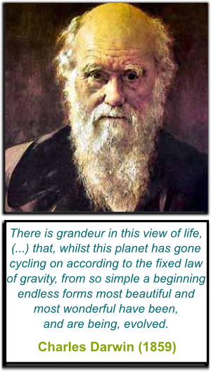 Darwin's Quote