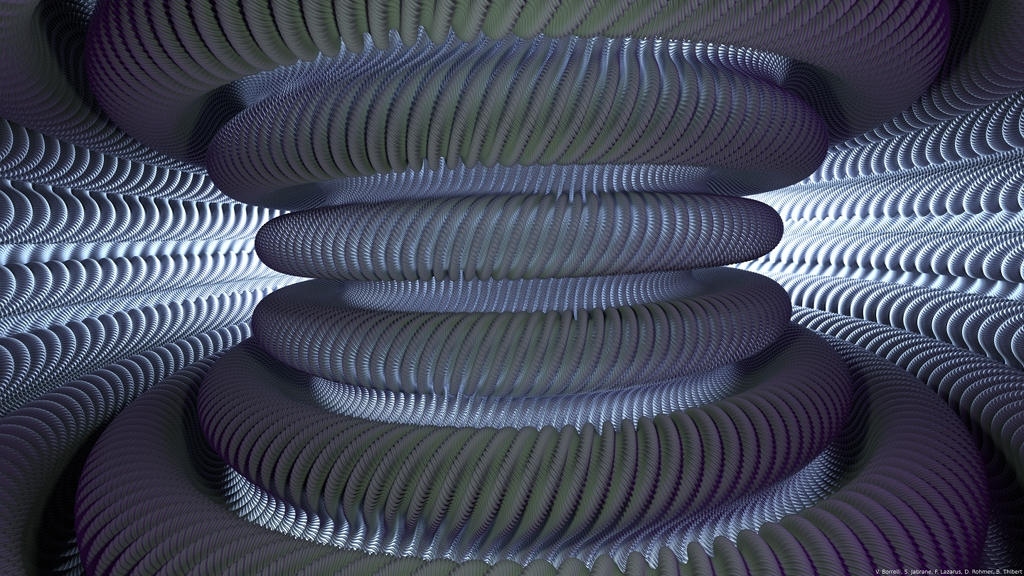Inside the Hévéa Torus